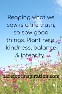So good things. Plant help, kindness, balance.