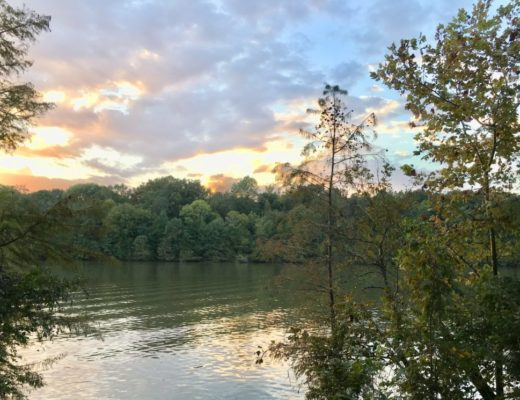colors of Mississippi: photo take on the Tombigbee in Mississippi