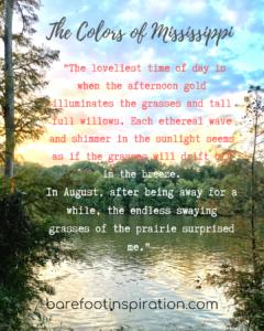 quiet colors of Mississippi