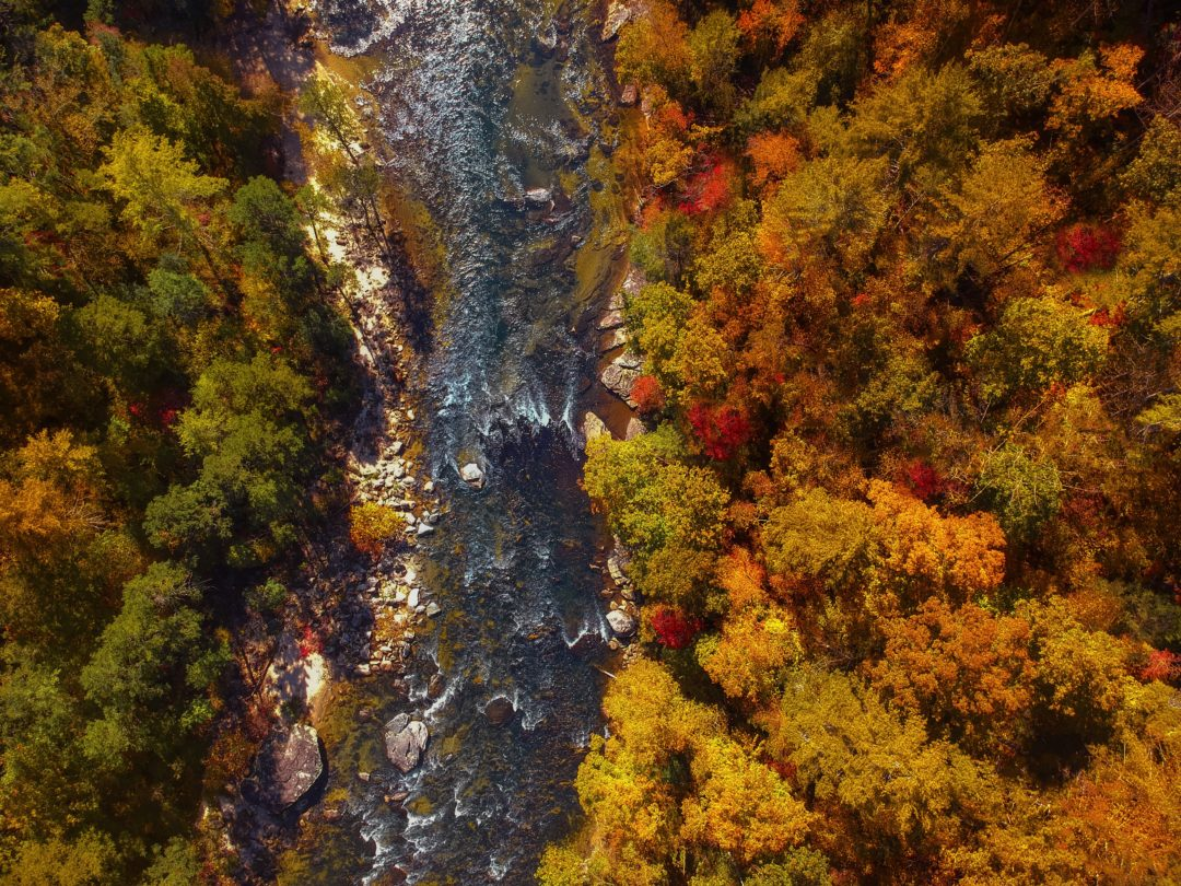 Chatooga River in the north Georgia mountains