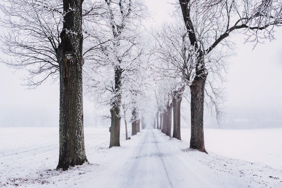 snowfall snow gift